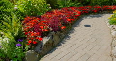 4K Red Flowers along Path, Butchart Gardens Stock Footage