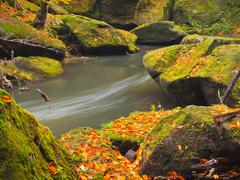 Autumn colorful mountain river. White foamy rapids in curve of river. - stock photo