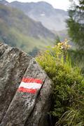 Idyllic alpine landscape at austria Stock Photos