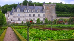 Establishing shot of the remarkable chateaux and maze gardens of Villandry in Stock Footage