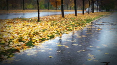Wet weather autumnal alley with yellow red foliage and cold Rain Stock Footage