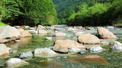 Rio Ara river Bujaruelo in Valle de Ordesa valley Pyrenees Stock Footage
