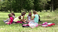 Children playing cards on the field. Kids on picnicking in nature. Stock Footage