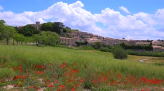 Wildflowers bloom near a beautiful ancient town in Provence, France. - stock footage