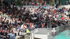 Public before the  dolphins water show in Duisburg Zoo. Germany Stock Footage