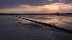 Beautiful light reflects of rice fields and paddies near Albufera, Spain. Stock Footage