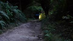 Backpacker Hiking on Path Stock Footage