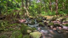 Jungle River Waterfall Tracking HDR Time Lapse, Hawaii, Oahu Stock Footage