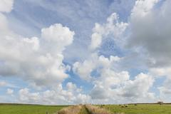 Dutch white clouds in blue sky with path on texel Stock Photos