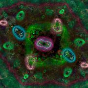 Bacteria under microscope - stock illustration