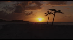 Sun Set Time Lapse in the Caribbean with Palm Trees Stock Footage