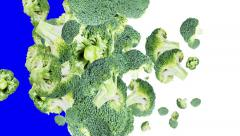 Broccoli transitions (with alpha) Stock Footage