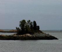 Island oasis Stock Footage