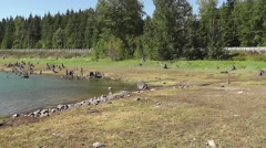 Alder Lake Pan From Right To Left Stock Footage