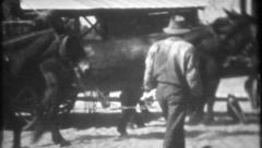 1157 - black farm workers prepare the horses for wagon - vintage film home movie Stock Footage