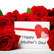 Mothers day message with red roses Stock Photos