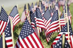 Large Group Of American Flags With Shallow DOF - stock photo
