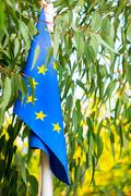 Eu flag among the leaves of the tree Stock Photos