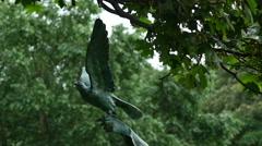 Closeup shot of beautiful  falcon statue in seaside park 4k Stock Footage