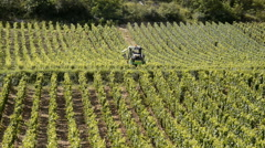 Vineyards of Cote de Beaune near Pommard, Burgundy, France Stock Footage