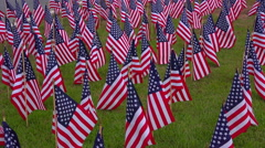 Large display of small American flags Stock Footage
