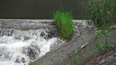 Rushing Water Flows Patch Of Grass In The Hirai-gawa River Tokyo 4K Stock Footage