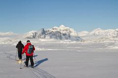 Researchers who go skiing in the winter antarctic day Stock Photos