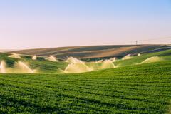 Illuminated sprinklers watering crop field Stock Photos