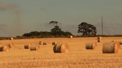 Bale Of Hay At Sunrise Stock Footage