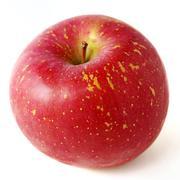 Stock Photo of fresh japanese apple isolated