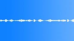 Forest Background - sound effect
