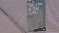 Polar bears who misbehave are confined in the polar bear jail in Churchill, Stock Footage