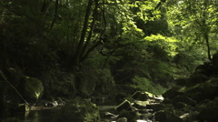 Near mt.Fuji river, color graded Full HD (1920x1080) Stock Footage