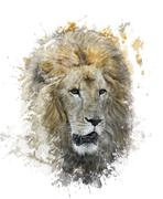 Watercolor image of lion head Stock Illustration