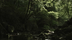 Near mt.Fuji river, non color graded 4K (3840x2160) Stock Footage