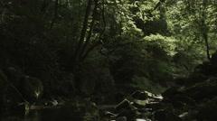 Near mt.Fuji river, non color graded 4K (3840x2160) - stock footage
