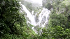 Preto lorsu waterfall White heart in the forest Stock Footage