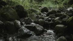 Rock & moss Osino, non color graded Full HD (1920x1080) Stock Footage