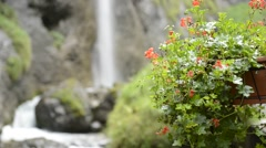 Waterfall and flowers, Dolomites Stock Footage