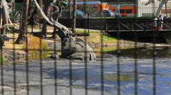 Elephant Mammoth through bars at LaBrea Tar Pits, Los Angeles Stock Footage