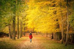 In autumn park Stock Photos