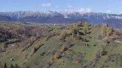 Beautiful Autumn Morning Carpathian Mountain Golden Foliage Pine Hardwood Forest Stock Footage