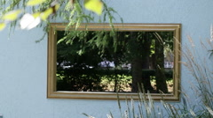 Window outside - focus shifting to leaves on tree Stock Footage