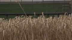 Harvesting Wheat in Germany 5 Stock Footage