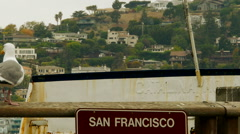 Seagull Welcomes to San Francisco Stock Footage