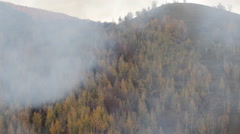 Disastrous Forest Fire Dense Smoke Thick Air Pollution Autumn Mountain Valley Stock Footage