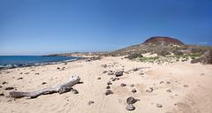 La Graciosa - Wild sand beach at Playa Francesa Stock Photos