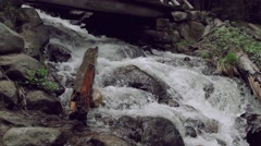 Stream Water in Colorado Stock Footage