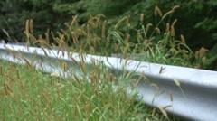 Wheatgrass Guardrail - stock footage