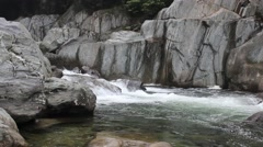 Rock shallow stream Stock Footage